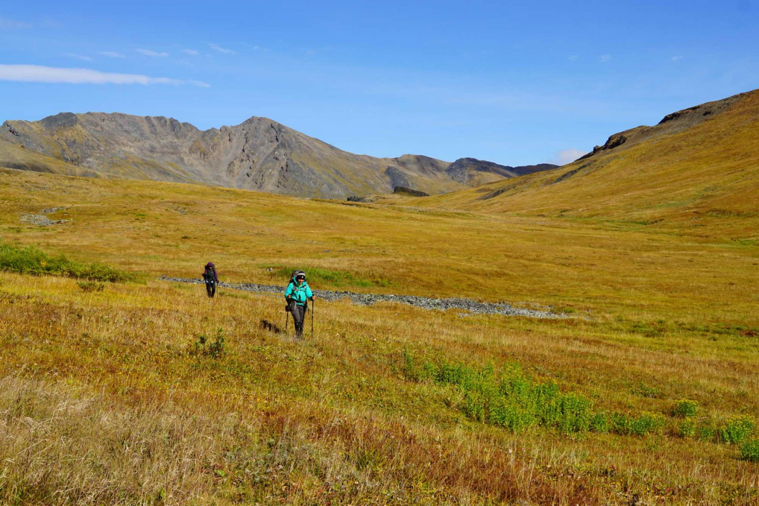 Backpacking-in-the-fall-colours-Along-the-ridge-Ogilvie-Mountains