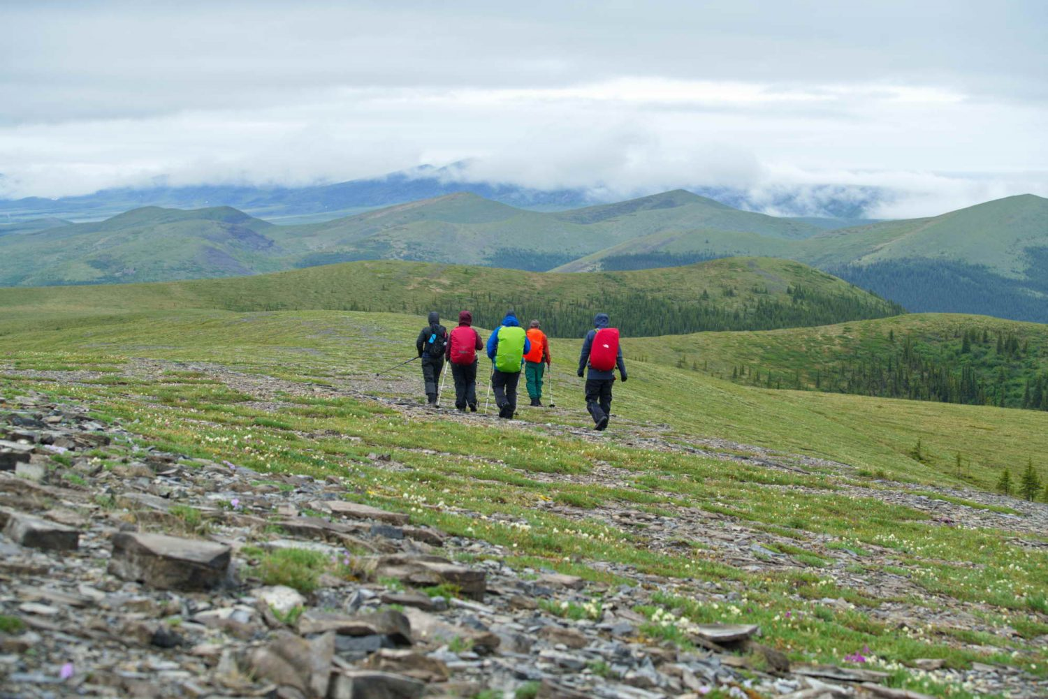 Dempster-Highway-hiking-in-tundra