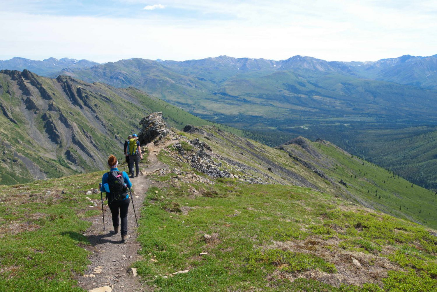 Tombstone-hikers-on-grizzly-trail